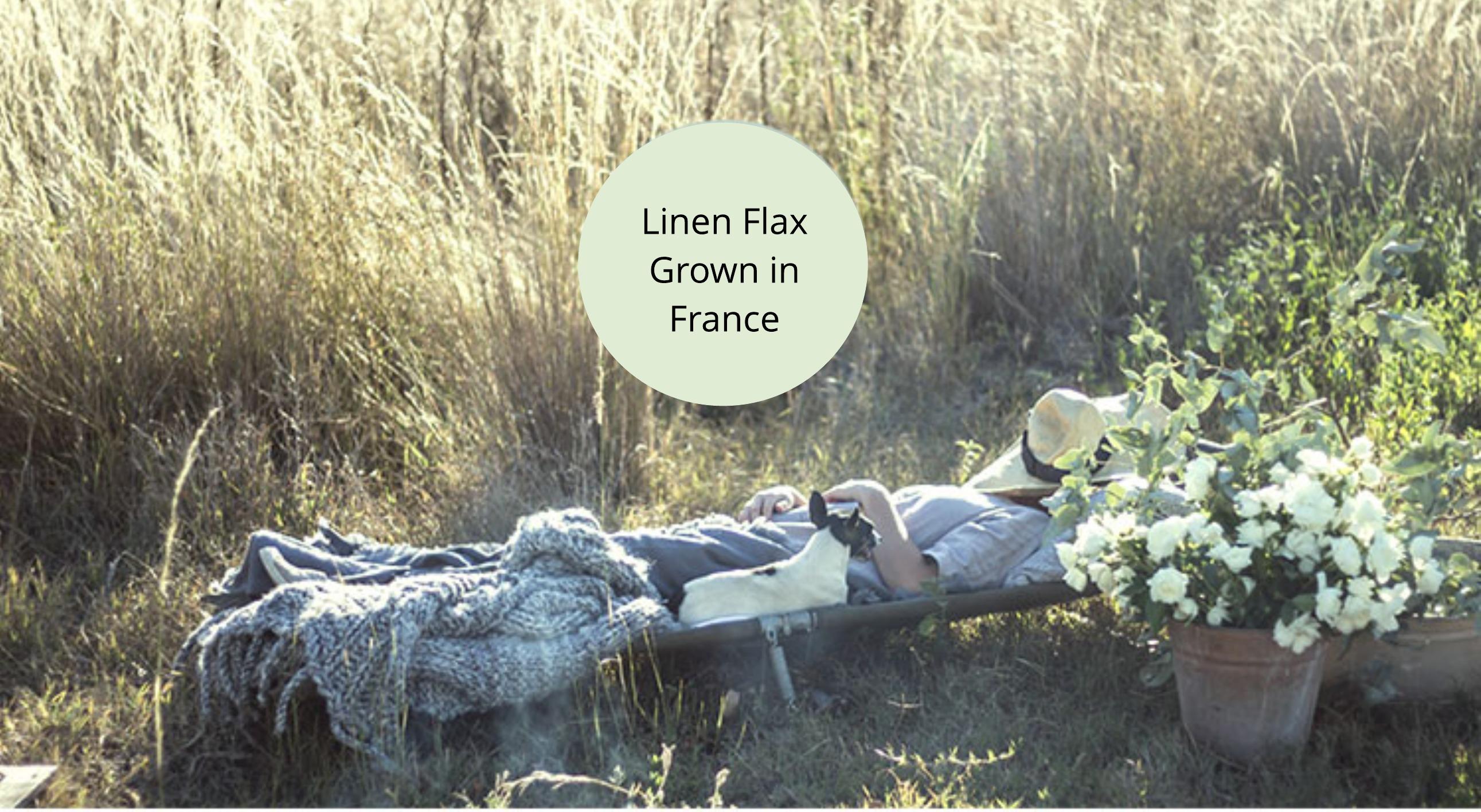 linen-flax-grown-in-france.jpeg